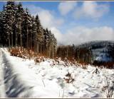 zima48